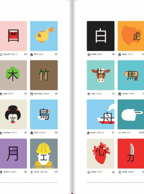 chineasy2
